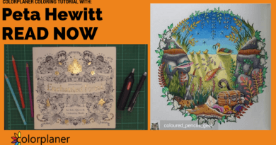 colouring-tutorial-colour-with-peta-hewitt