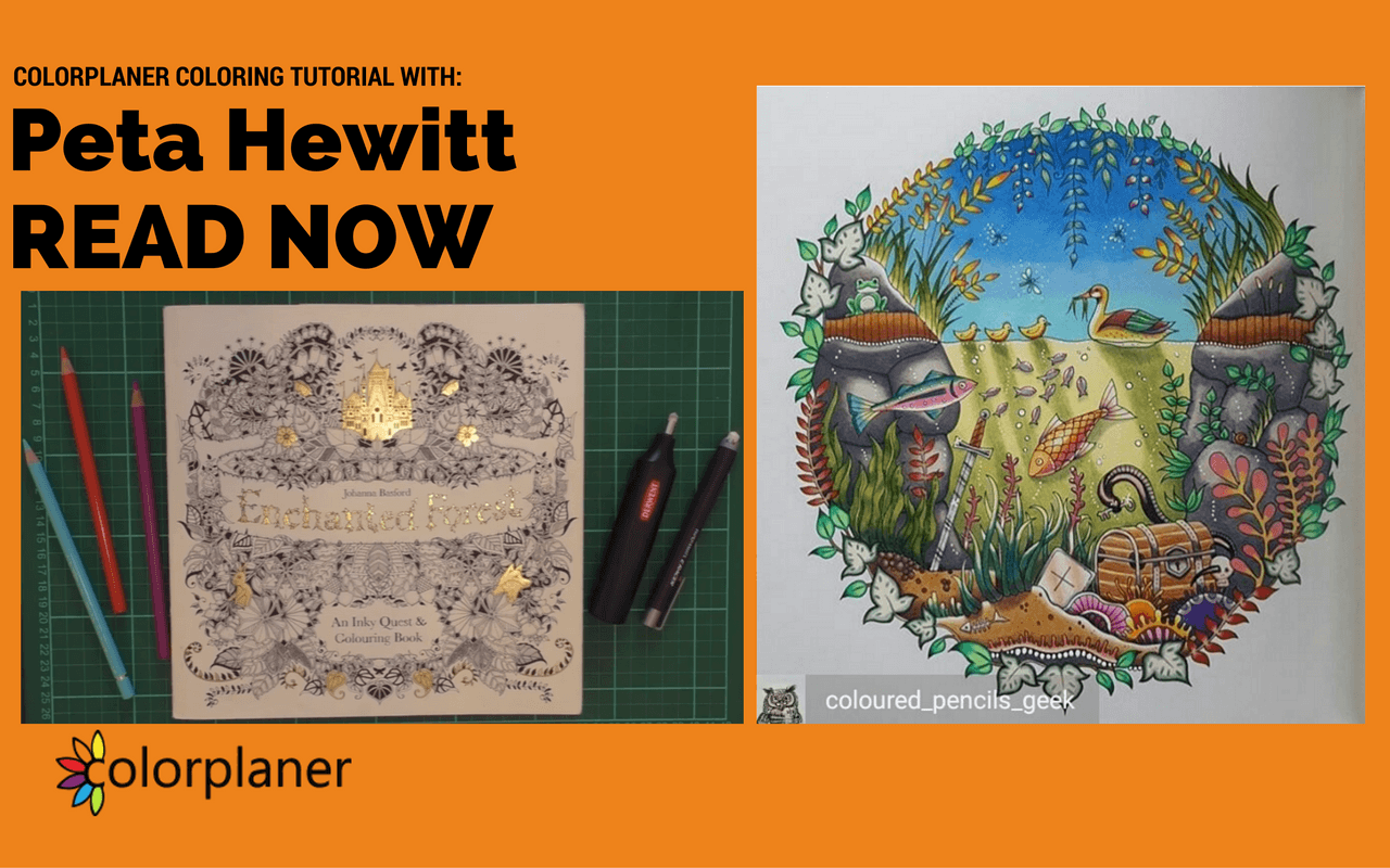 Colouring Tutorial Colour With Peta Hewitt