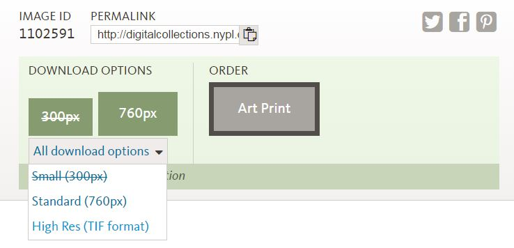 nypd-search-public-domain-downlad-options